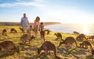 19-Day Fascinating Australia With New Zealand & Fiji