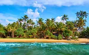 5-Day Pure Sri Lanka Beach Holiday