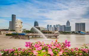 6-Day Durga Pujo Singapore O Cruiseyatra