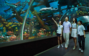 5-Day Grand Value Tour Of Singapore