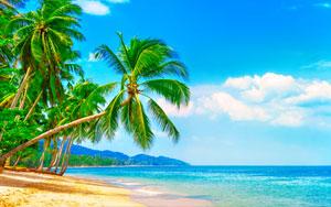 7-Day Easy Mauritius 4 Star Anelia